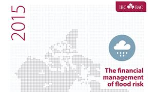 The Financial Management of Flood Risk