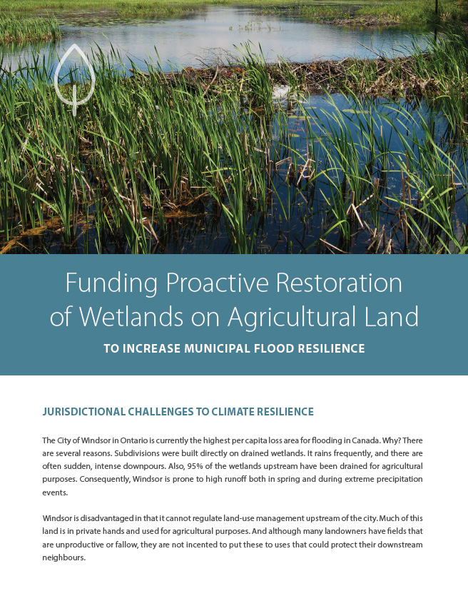 Funding Proactive Restoration of Wetlands on Agricultural Land