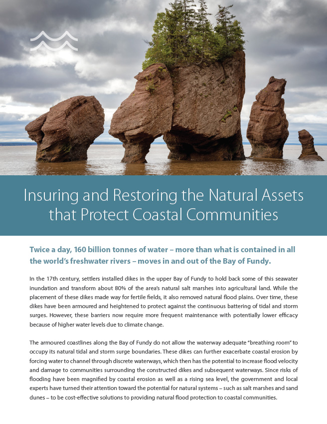Insuring and Restoring the Natural Assets that Protect Coastal Communities